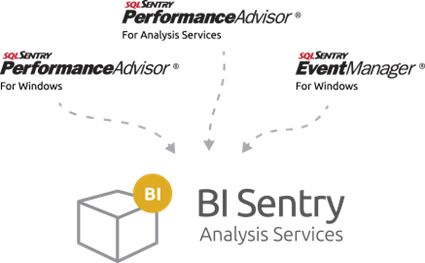 bi-sentry-diagram