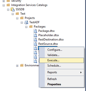 Execute page on a local SSIS catalog