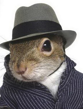 Investigator? Detective? Or just a sharp-dressed rodent?